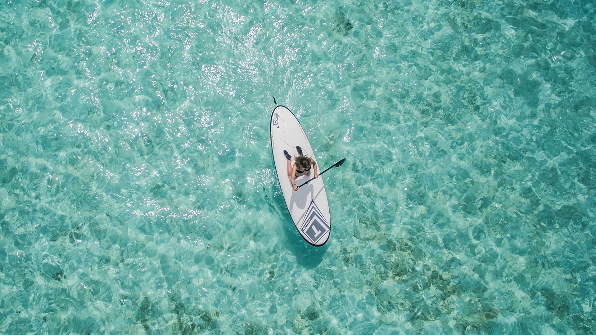 Paddle boarder in Hawaii