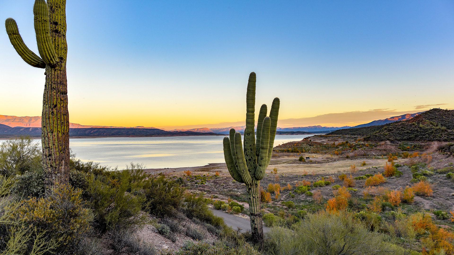 Arizona desert sun